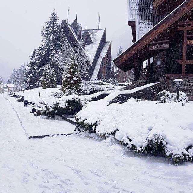 отдых в горах отель Царинка
