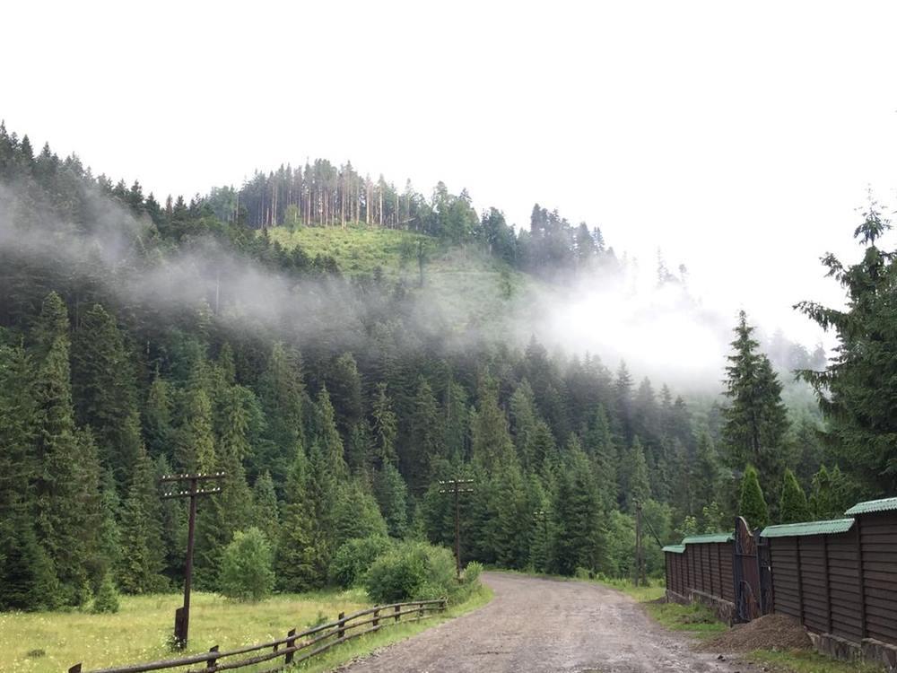 Карпатські ліси готель Лісовий маєток