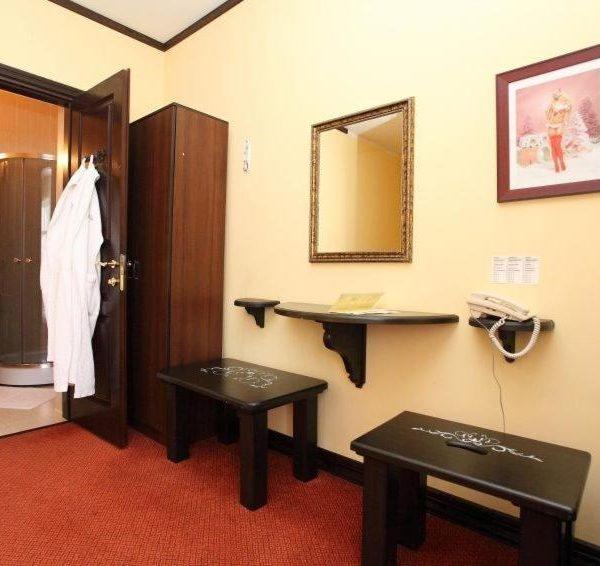 Комфортабельный номер в отеле Золотая Подкова