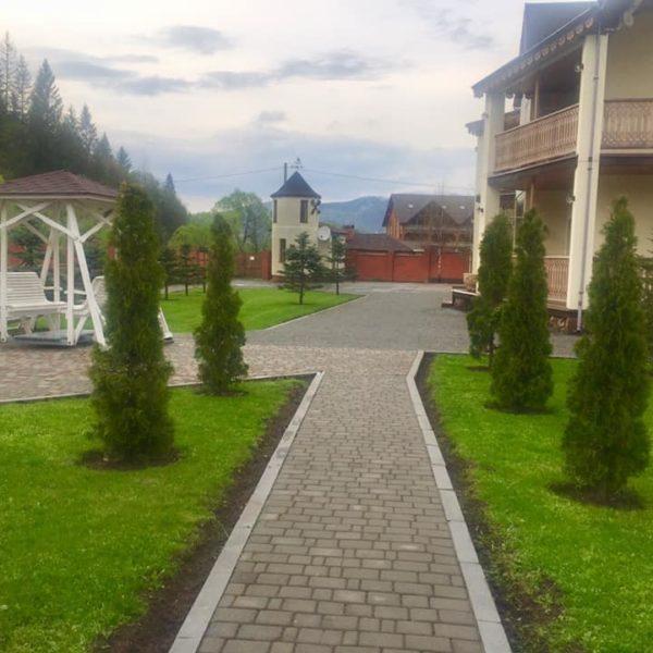 Зеленые саженцы на территории отеля Золотая Подкова