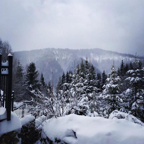 красивая зима горы вилла Альпийка