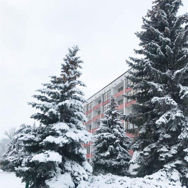 Зима в санатории Дубрава