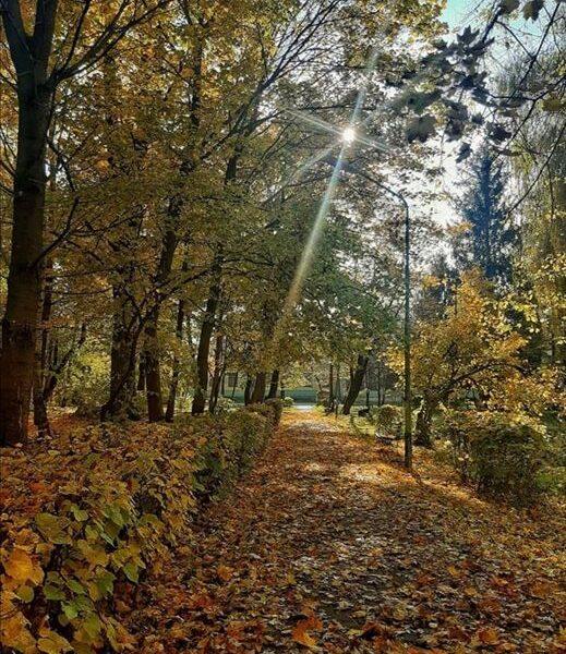 Осень в санатории Любень Великий