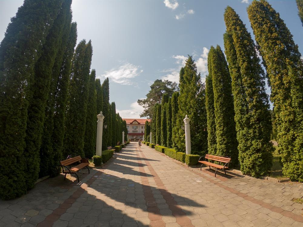 Лето в санатории Червона Калина