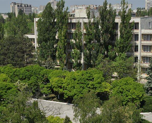 Зеленая территория в санатории Золотая Нива