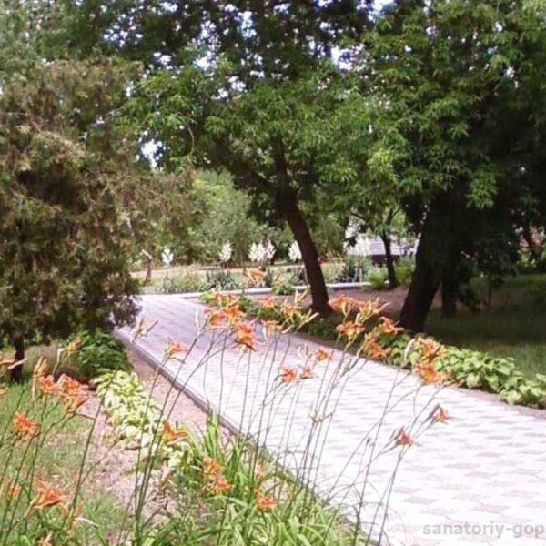 Красивая территория в санатории Гопри фото