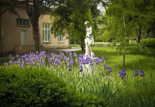 Літо в санаторії Лермонтовський
